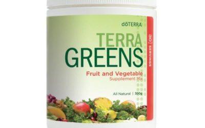 TerraGreens: groen en toch lekker?